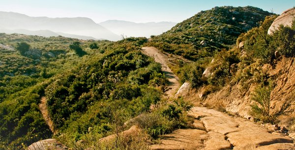 Running and Biking Trails in San Diego | Military Town Advisor